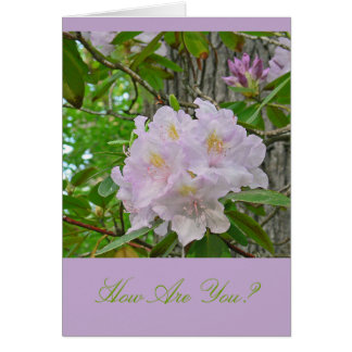 "NOTECARD, ""SOFT PALE LAVENDER RHODODENDRON"" NOTE CARD"