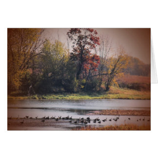 Notecard with Autumn Wetlands Scene Note Card