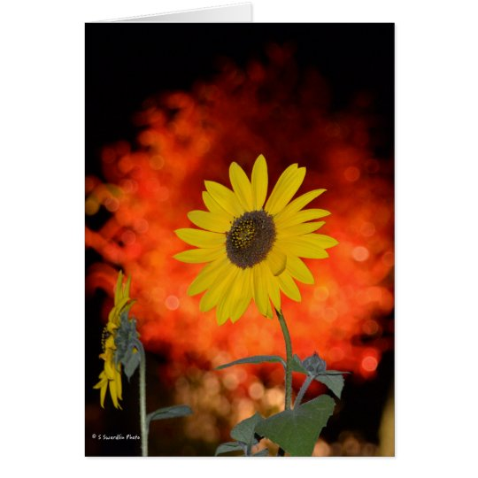 Notecard with Sunflower