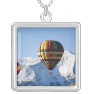 Noth America, USA, Colorado, Mt. Crested Butte, Silver Plated Necklace