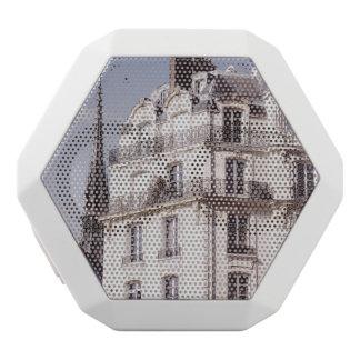 Notre Dame and Parisian Architecture