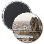 Notre Dame de Paris chimera Fridge Magnets