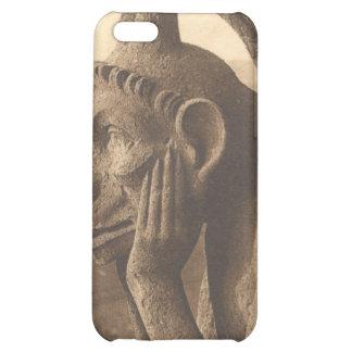 Notre Dame Gargoyle iPhone 5C Cases
