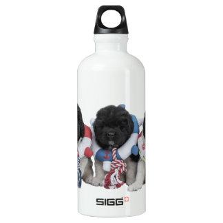 Notta Bear Newfoundlands Water Baby Water Bottle