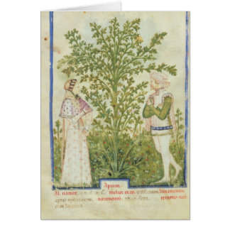 Nouv Acq Lat Celery, from 'Tacuinum Sanitatis' Card