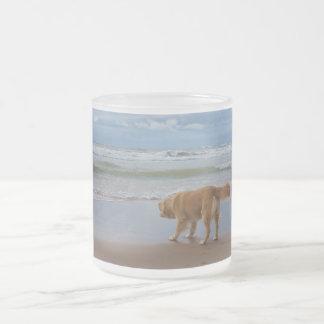 Nova Scotia Duck Tolling Retriever Ocean Cautious 10 Oz Frosted Glass Coffee Mug