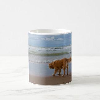 Nova Scotia Duck Tolling Retriever Ocean Cautious Classic White Coffee Mug