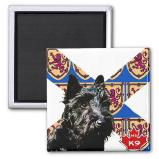 Nova Scotia Scottish Terrier Square Magnet