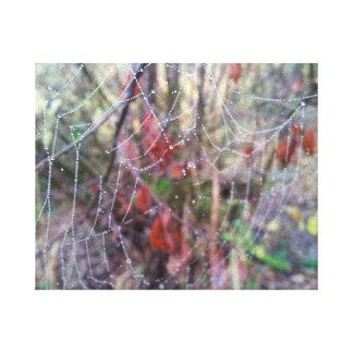 November Cobweb Canvas Print