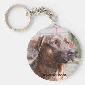 Nowzad Rescue Dog Brin Keyring