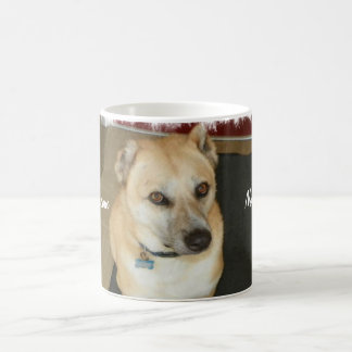Nowzad Rescue Dog Coffee Mug