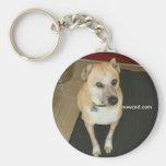 Nowzad Rescue Dog Keyring Keychains