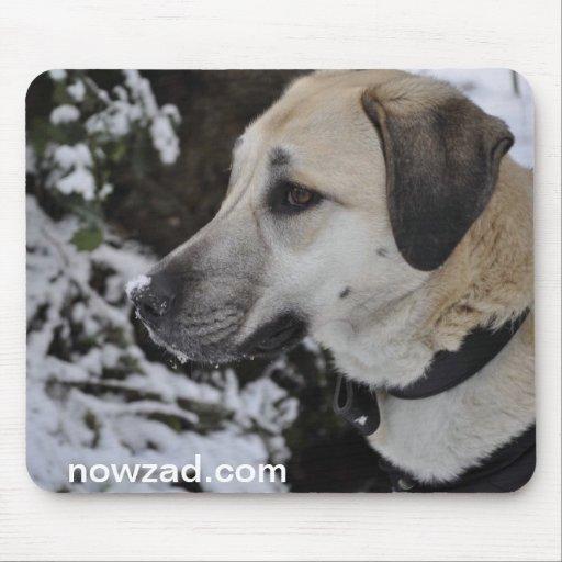 Nowzad Rescue Dog Kilo Mousepad