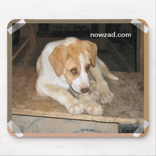 Nowzad Rescue Dog Mousepad