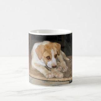 Nowzad Rescue Dog Mug