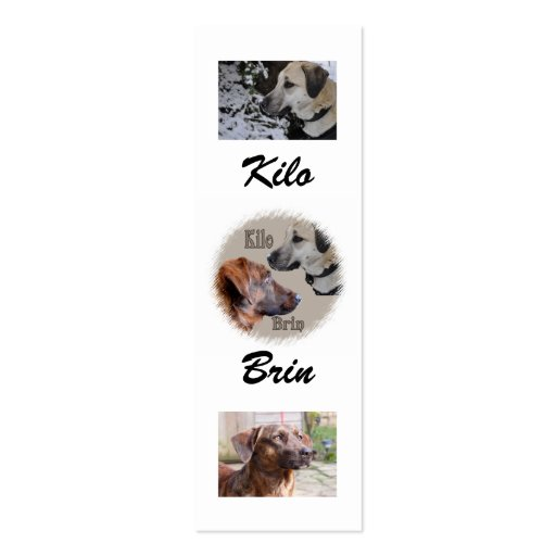 Nowzad Rescue Dogs Bookmark Business Card