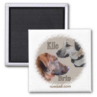 Nowzad Rescue Dogs Brin & Kilo Magnet