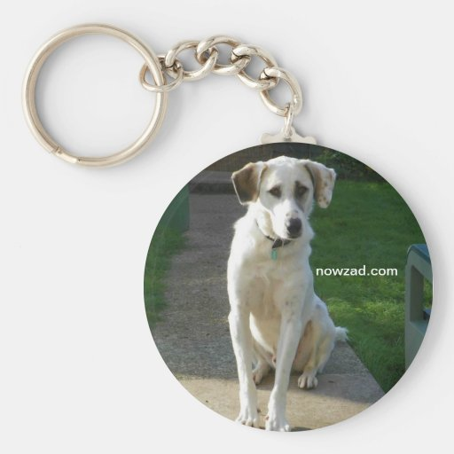 Nowzad Rescue Patch Keyring Keychains