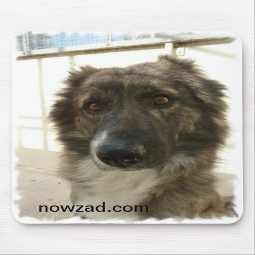 Nowzad Rescue Wylie Mousepad