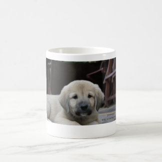 Nowzad Strawberry Mug