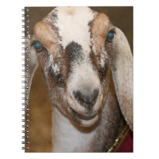 Nubian Dairy Goat Doe White Stripe Caprine Spiral Notebook