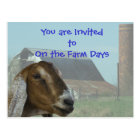 Nubian Goat Farm Day Invitation- customise Postcard