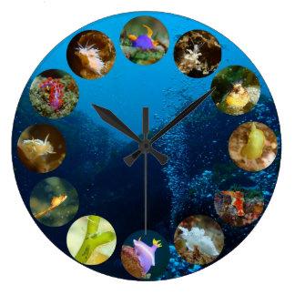 Nudibranch Clock