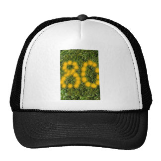 number eighty designed with dandelion on the lawn cap