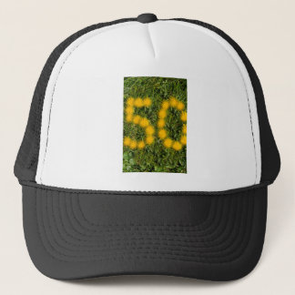 number fifty designed with dandelion on the lawn trucker hat