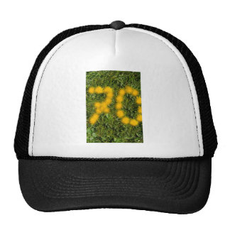 number seventy designed with dandelion on the lawn cap