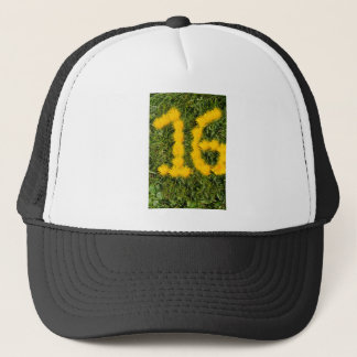 number sixteen drawn with dandelion on the lawn trucker hat