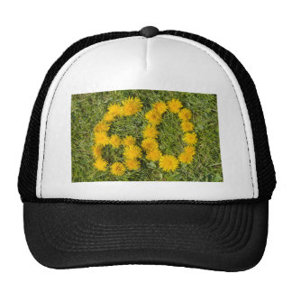 number sixty designed with dandelion on the lawn cap