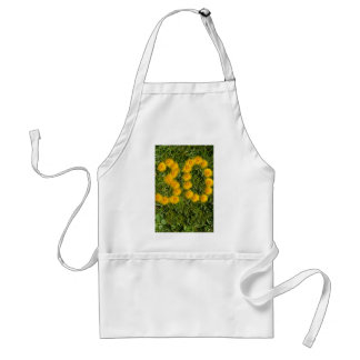 number thirty drawn with dandelion on the lawn standard apron