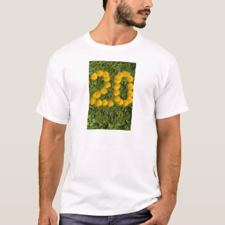 number twenty drawn with dandelion on the lawn T-Shirt
