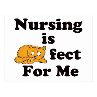 Nursing is Purrr-fect For Me Postcard