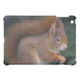 Nut Brunch iPad Speck Case Cover For The iPad Mini