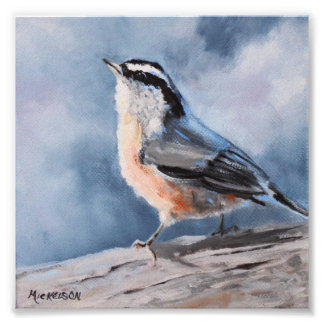 Nuthatch Bird Fine Art Print