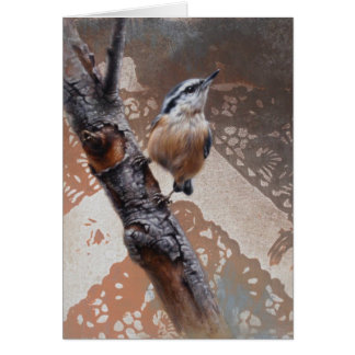 Nuthatch Blank Card by Andrew Denman