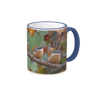 Nuthatch collage ringer mug