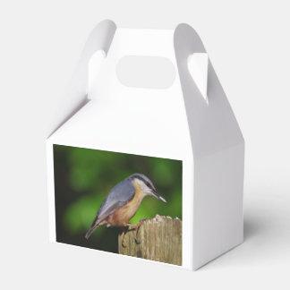 Nuthatch Favour Box
