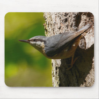 Nuthatch Mouse Mat