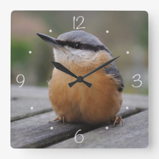 Nuthatch photo square wall clock