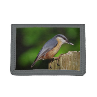 Nuthatch Wallet