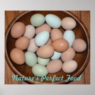 Nutritious Egg Poster