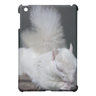 Nutty's Prayer iPad Speck Case Cover For The iPad Mini