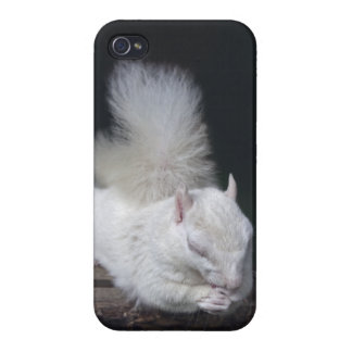 Nutty's Prayer iPhone 4 Speck Case iPhone 4 Cover