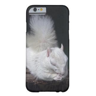 Nutty's Prayer iPhone 6 Case