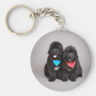 Nuwfie brothers key ring