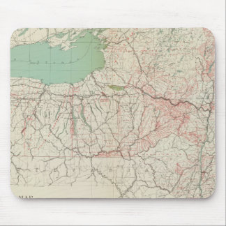 NY land grants, patents, purchases Mouse Mat