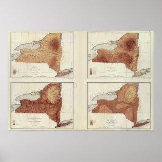 NY rainfall, population, elevation, temperature Poster